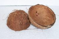Coconut shell fiber